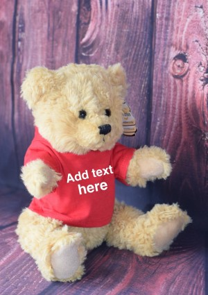 Mumbles medium Teddy with personalised hoodie