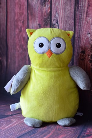 Cubbie Owl Hooty Loo with embroidered message & Free Delivery