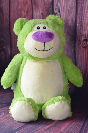 Green Teddy Bear with embroidered message & Free Delivery