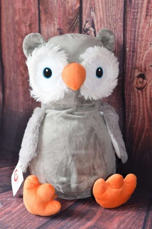 Cubbie Owl Hooty Lou with embroidered message & Free Delivery